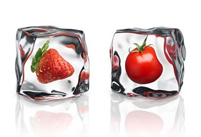 Fototapeta Strawberry and Tomato 376